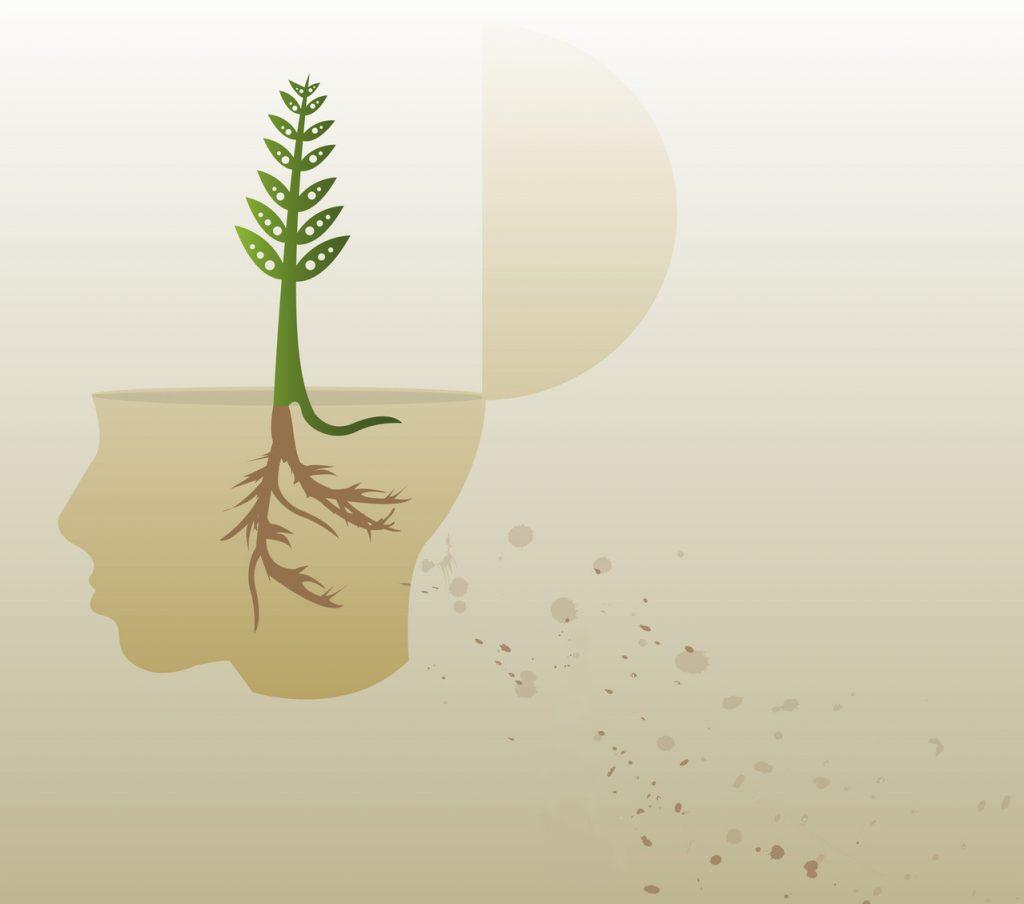 Seminario: La mente adolescente e le neuroscienze